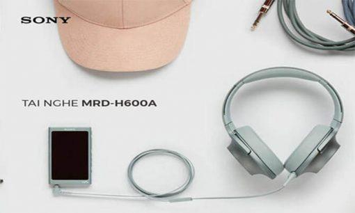 h600a